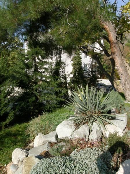 газон возле коттеджей